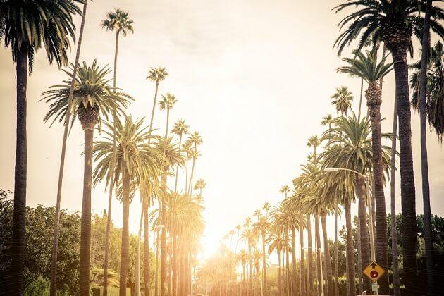 5 Star Air Beverly Hills