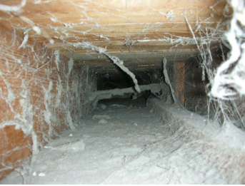 8 Signs Your Air Ducts Make You Sick